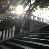 SUSS日枝神社1